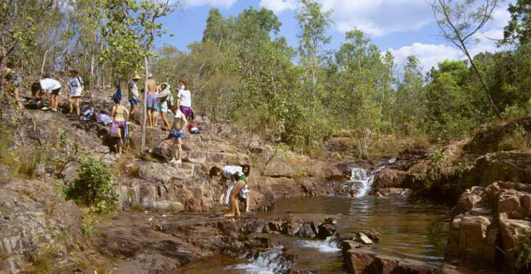 From Darwin: Litchfield National Park Full-Day Tour