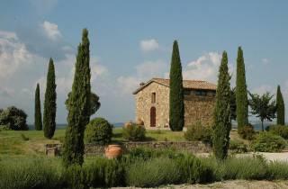 Ab Siena: Brunello di Montalcino Weintour mit Minivan