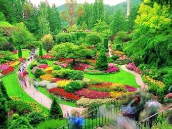 Butchart Gardens: Erkundungstour