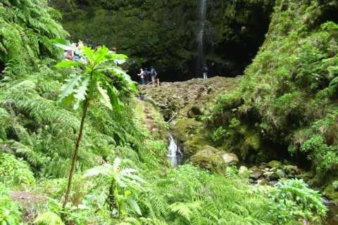 Madeira: levada y cascada del Caldeirão Verde