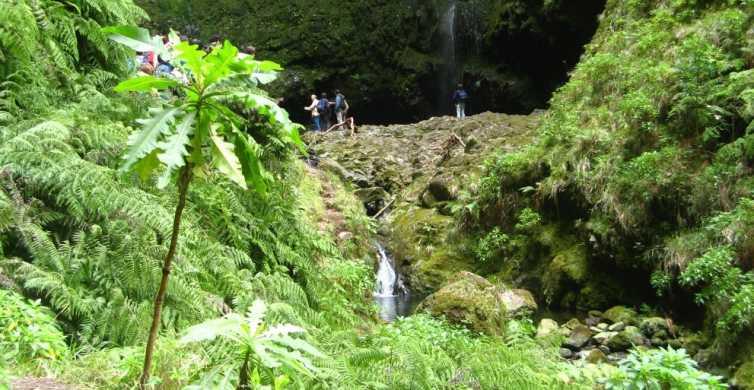 Levada Walk and Caldeirao Verde Waterfalls: Madeira