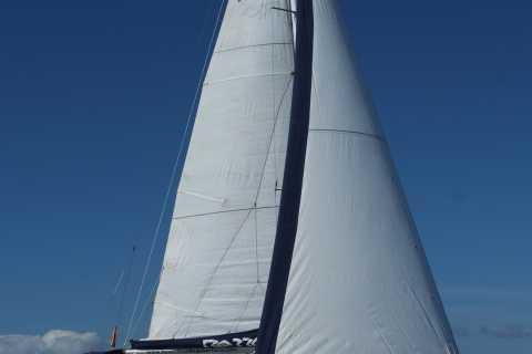Tenerife: Yacht privato di 3 ore con balene e dinghi