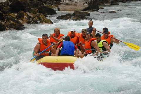 River Tara Rafting in Montenegro: Full-Day from Dubrovnik
