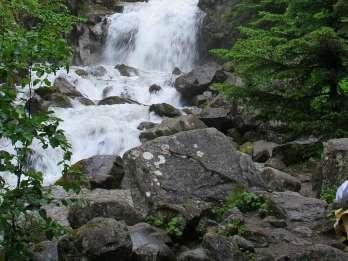 Ab Skagway: Tour auf den Gipfel des White Pass per Bus