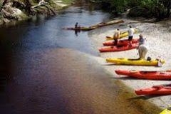 Caiaque do Econlockhatchee River: Day-viagem de Orlando