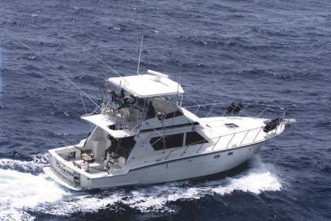 San Juan: Private Half-Day Deep Sea Fishing Charter