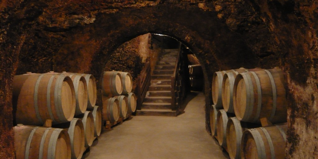 Madrid Region Wineries: Guided Tour and Tastings