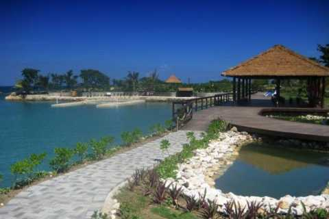 Negril: Dolphin Cove Tickets