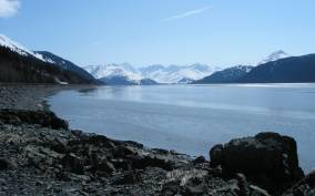 From Anchorage: Glacier and Wildlife Full-Day Tour