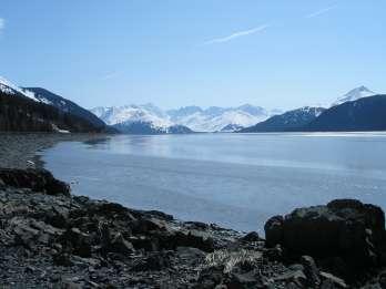 Ab Anchorage: Gletscher- und Wildtier-Tagestour
