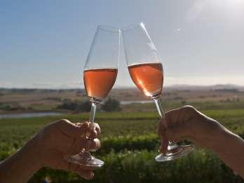Kapstadt: Gruppen-Tagestour zur Weinverkostung