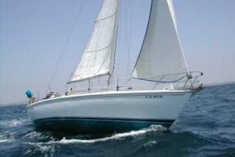 Channel Islands Full-Day Private Sailing Trip