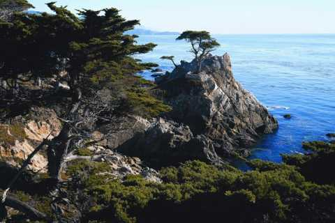 Pacific Coastal Highway Tour to Monterey & Carmel
