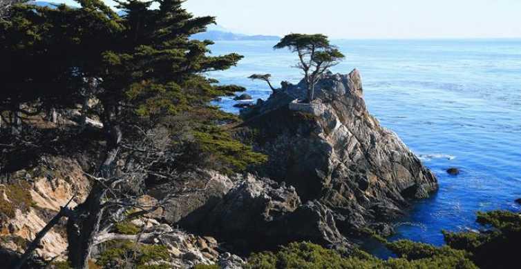 Pacific Coastal Highway Tour to Monterey & Carmel