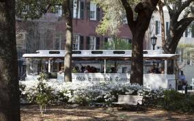 Historic Savannah Trolley Tour - Overview