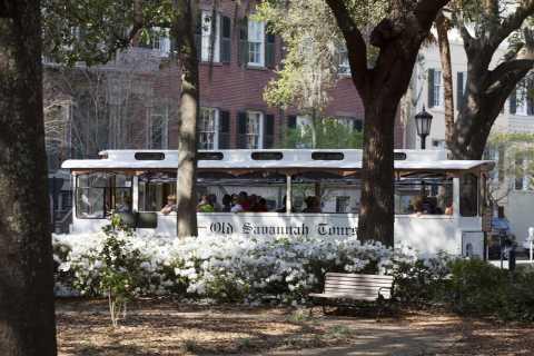 Savannah: História e excursão turística de bonde