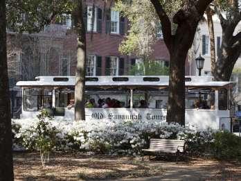 Historisches Savannah: Trolleybus-Tour