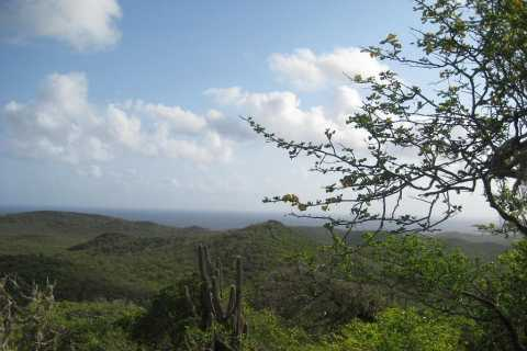 Natural Treasures of Curacao Jeep Tour