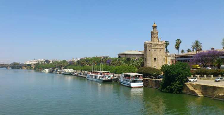 Desde la Costa del Sol: tour de 1 día a Sevilla