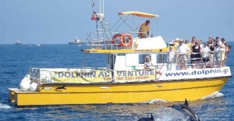 Baie de Gibraltar: croisière d'une heure et demie avec les dauphins