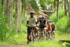Bali Campo Cycling Tour