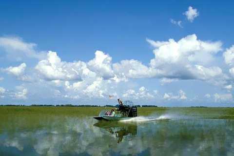 Everglades: airboat e alligatori con prelievo