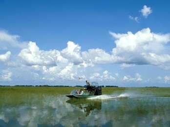 Everglades: Sumpfboot & Alligator-Show am Morgen oder Abend