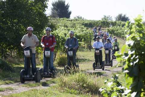 Neckar Valley 2.5-Hour Segway Tour: On the Mark Twain Trail