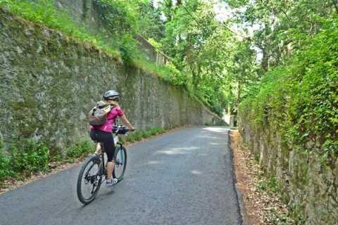 Sintra Full-Day Cycling Tour