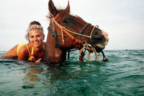 Grand Cayman Ride 'n' Swim