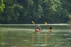 Cidade do Panamá: passeio pela selva e safari de Gatún no Canal do Panamá