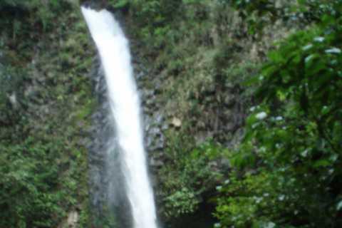 Ab La Fortuna: Wandertour durch den Tenorio Nationalpark