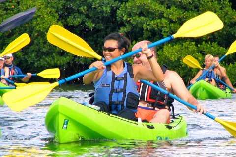 St. Thomas Mangrove Kayak, Hike, & Snorkel Tour with Lunch