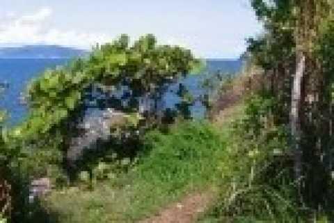 St. John 3-Hour Eco Hike and Snorkel