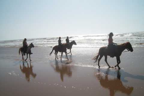 Agadir Horse Ride: 2-Hour Beach and Mountain Tour
