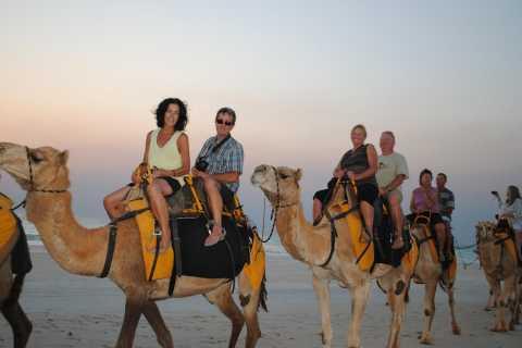 Agadir: esperienza di 2 ore in cammello