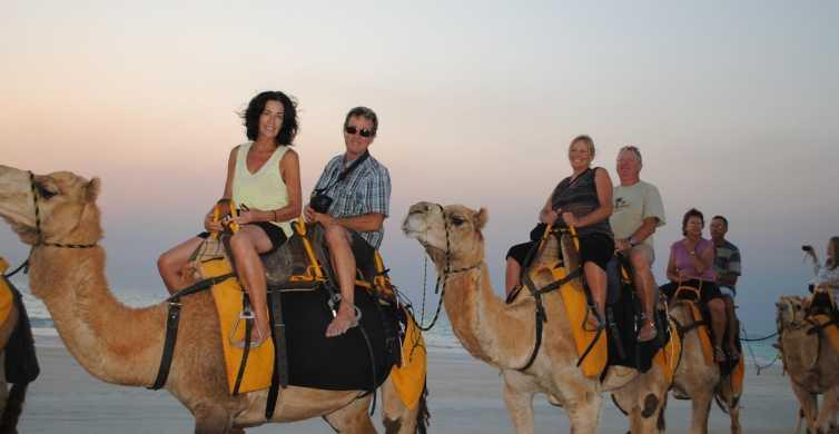 Agadir: 2-Hour Camel Ride Experience