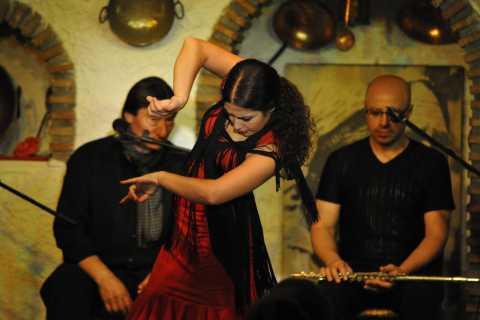Granada: Alhambra Guided Tour and Flamenco Show