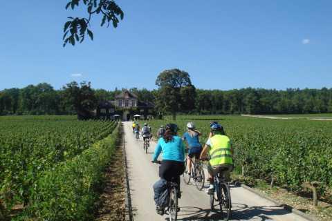 Från Beaune: Full-Day Cykel och Vin Tour i Bourgogne