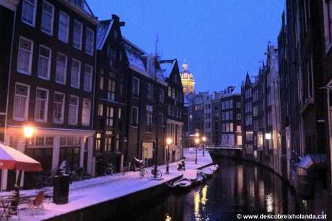 Amsterdam: 2-Hour Old Town Walking Tour