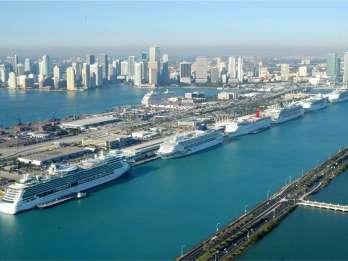 Everglades und Miami: Landausflug für Kreuzfahrtgäste