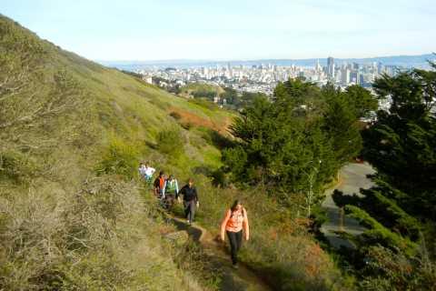 San Francisco 3-Hour Castro & Twin Peaks Urban Hiking Tour