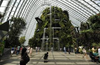 Singapur: Gardens by the Bay - National Garden Tagestour
