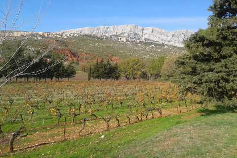 Full-Day Wine and Villages Tour from Aix-en-Provence