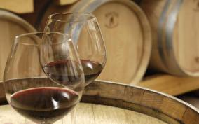 Aix-en-Provence: 3.5-Hour Wine Tasting in Cezanne Country