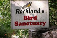 Rocklands Bird Sanctuary: Excursão de 2 horas a Montego Bay
