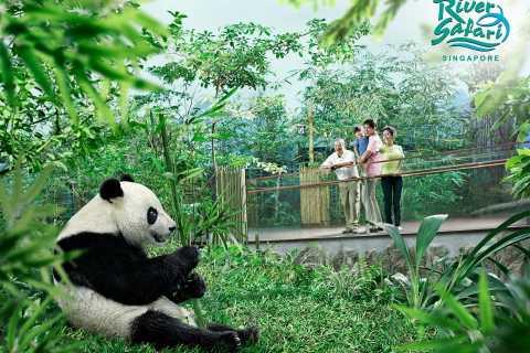 Singapur: experiencia en River Safari con recogida hotel