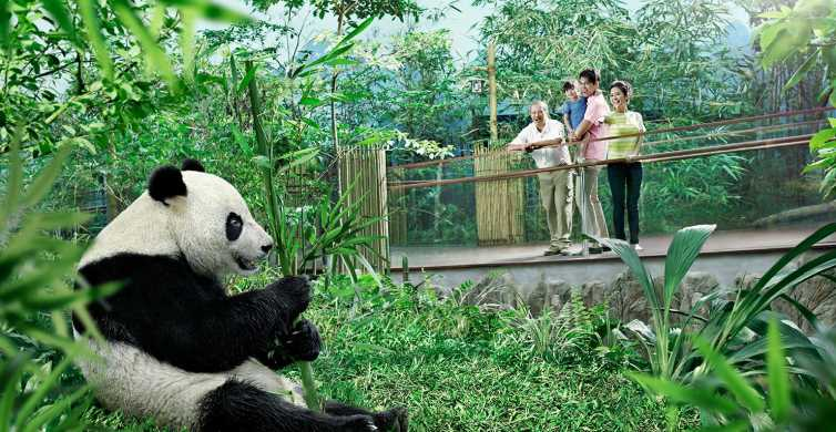 Singapore: River Safari Experience with Hotel Pickup