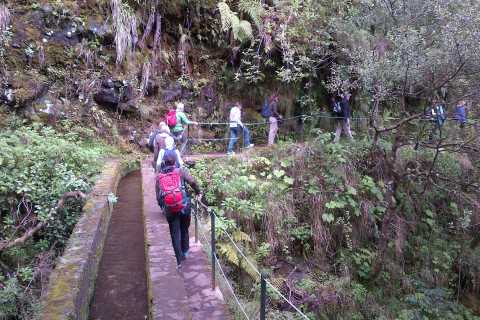 Queimadas Natural Park 5-Hour Guided Hike