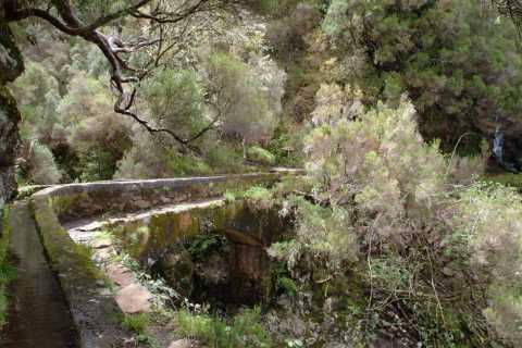 Madeira: Rabaçal Valleys 3-Hour Guided Walk